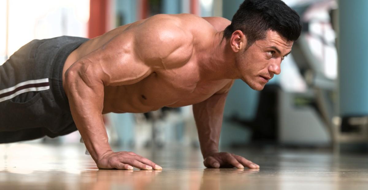 Liegestütze Muskeln