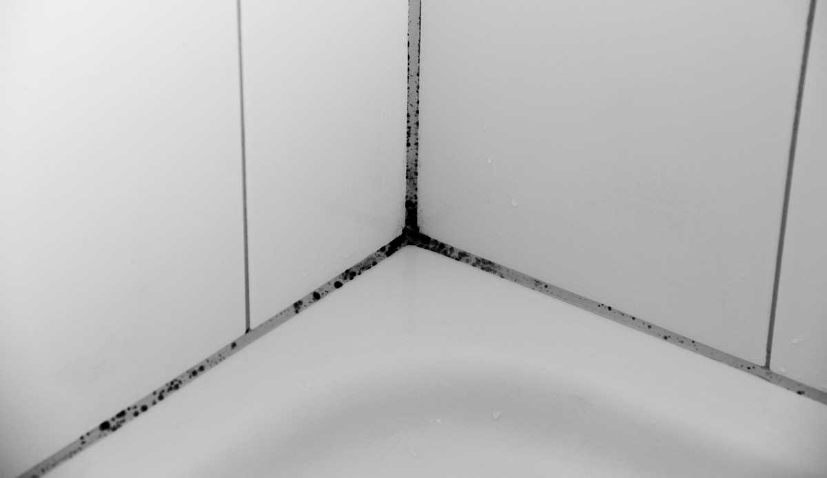 Schwarzer Schimmel im Bad